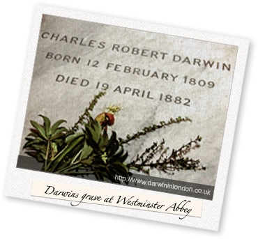 Darwins grave at Westminster Abbey