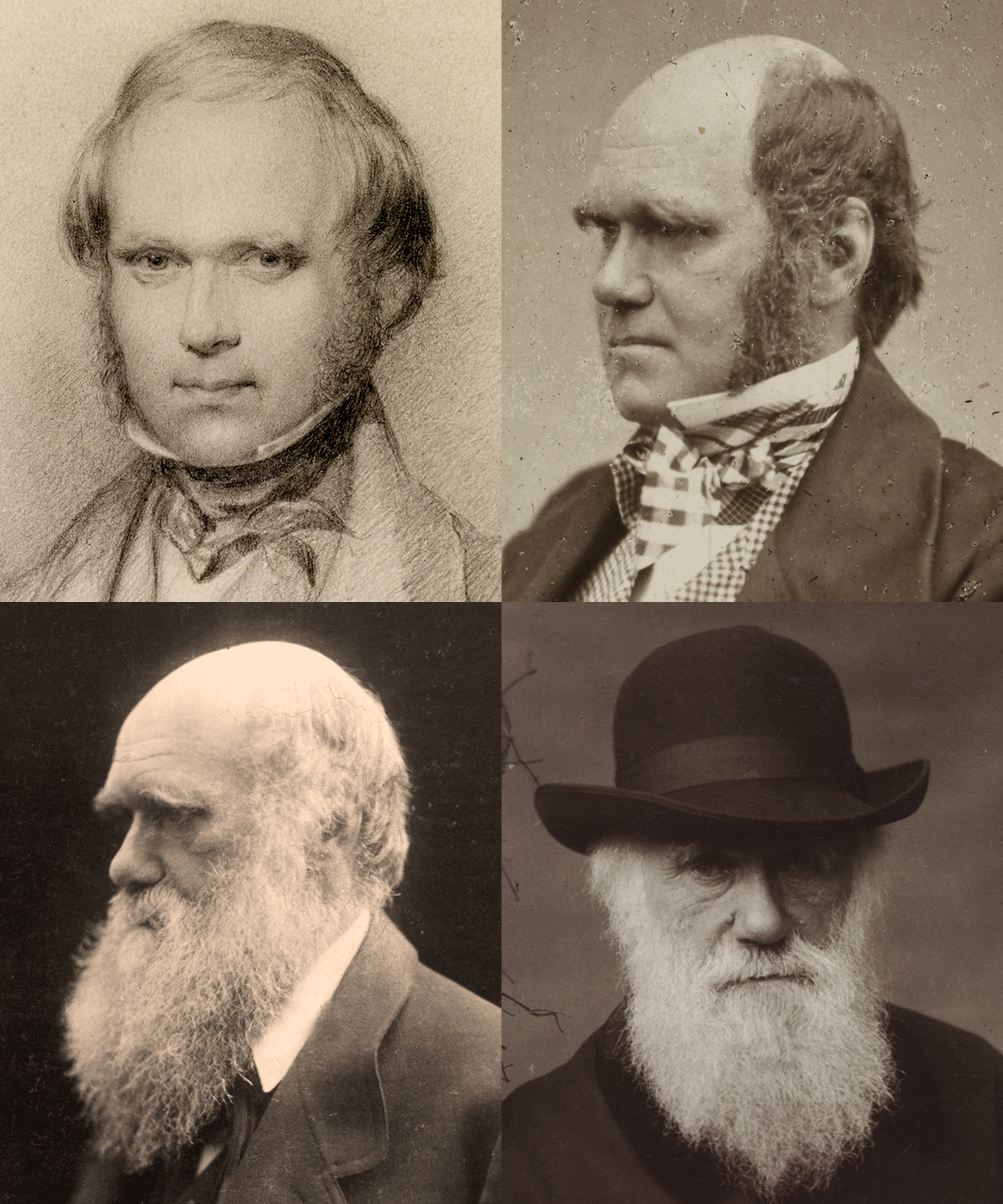Charles Robert Darwin at various ages