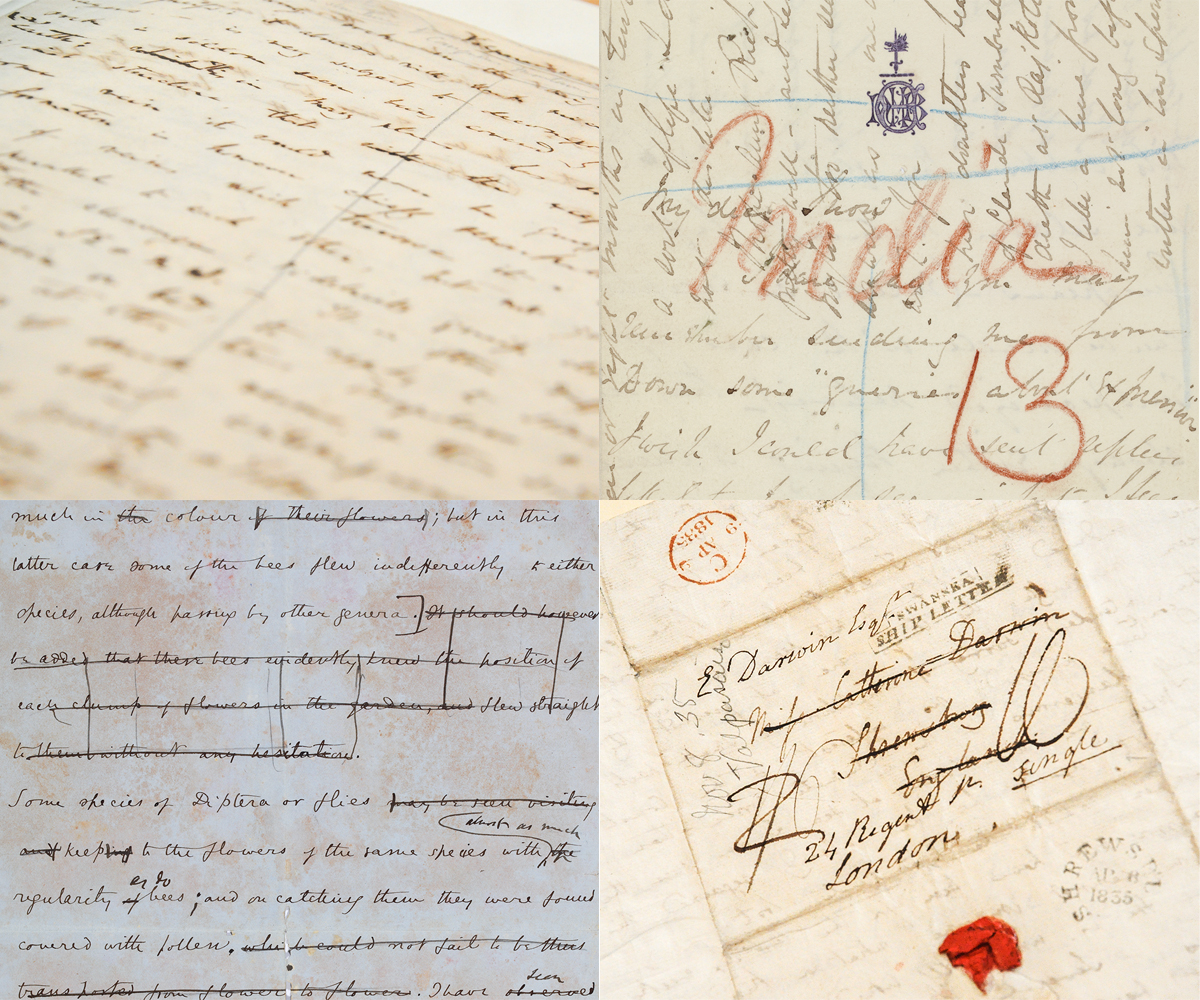 Examples of letters from the archive