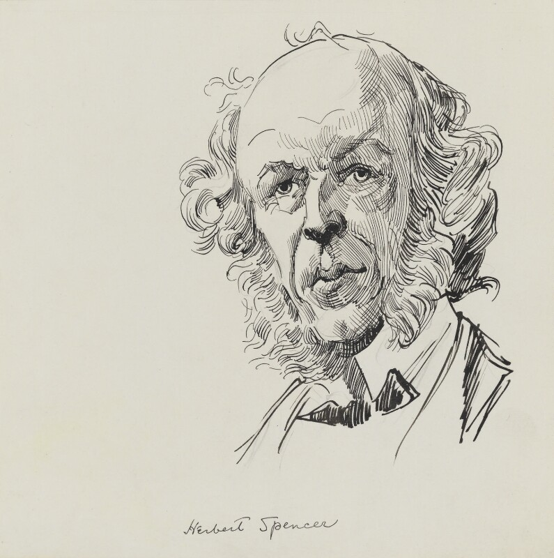 Herbert Spencer by Harry Furniss pen and ink, 1880s-1900s