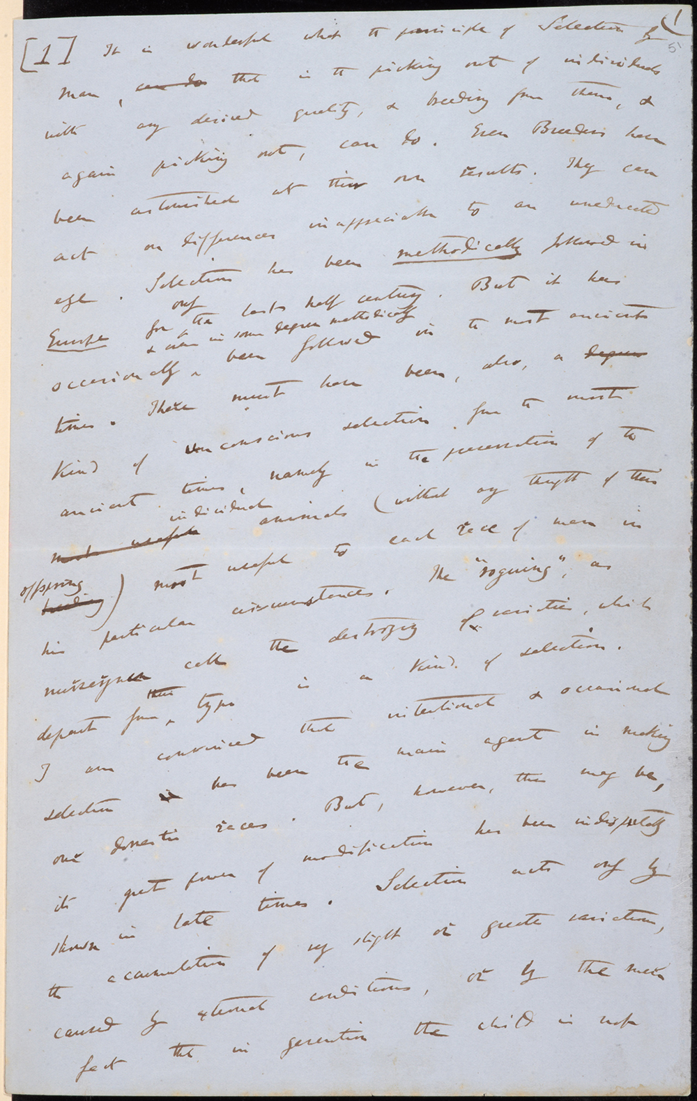 Darwin's draft outline of Species Theory, sent to Asa Gray in 1857