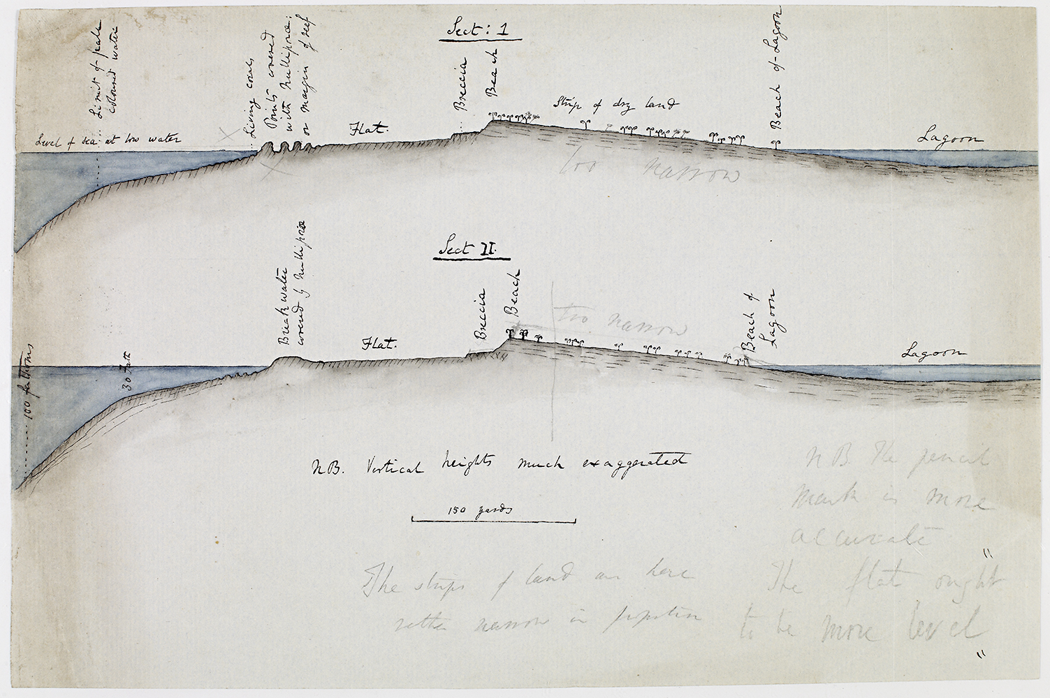 Darwin's hand-coloured cross-sectional view of the reef at Cocos (Keeling) atoll