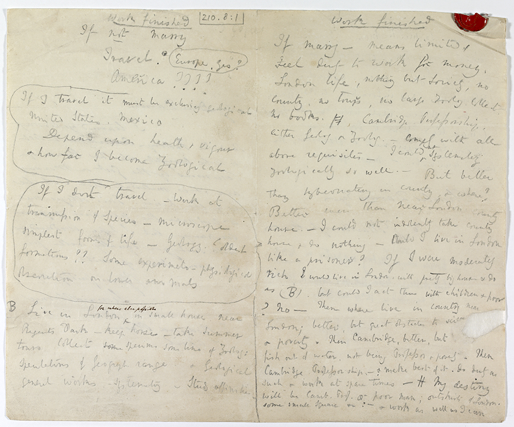 Darwin's first note on marriage