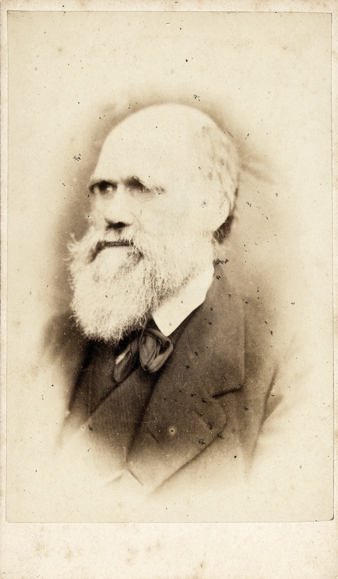 a study of the life and works of charles darwin Charles darwin went to the university of edinburgh for college charles darwin's early life continued charles darwin was a former christian before he made his discoveries in science and his death of his daughter.